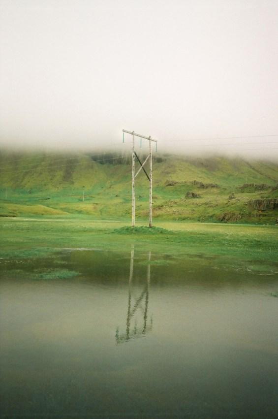 Feral Fjords - Steve Leon Brown