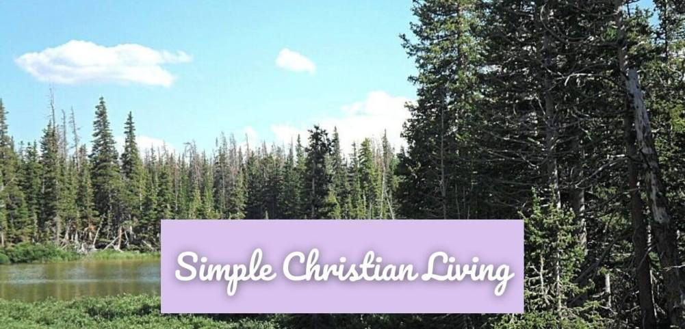 A Ruby in the Rough Picture of pines and water under a blue sky and fluffy clouds labeled Simple Christian Living