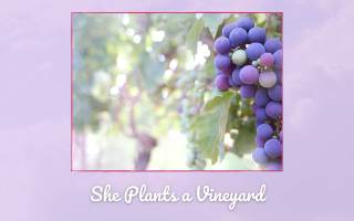 Grapes such as the Proverbs 31 woman had in planning for the future
