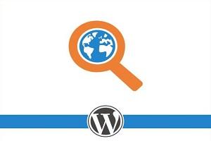 Optimasi Website Wordpress Secara Benar