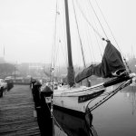 City-Dock-Annapolis-Photographer