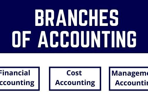 Branches of Accounting in Hindi