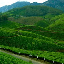 kerala-hill-tour-package