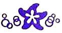 Mes Jolies Sirènes Sea Flower symbol