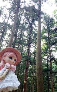 Pullip Forêt Niigata promenade