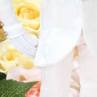 Taeyang Mamoru Chiba wedding version 2018