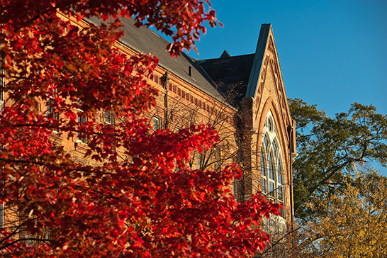 red autumn leaves and Manly Hall