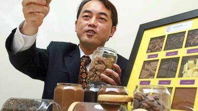 Photo of Guan Chong plans 120 million yuan capex for Côte d'Ivoire cocoa plant