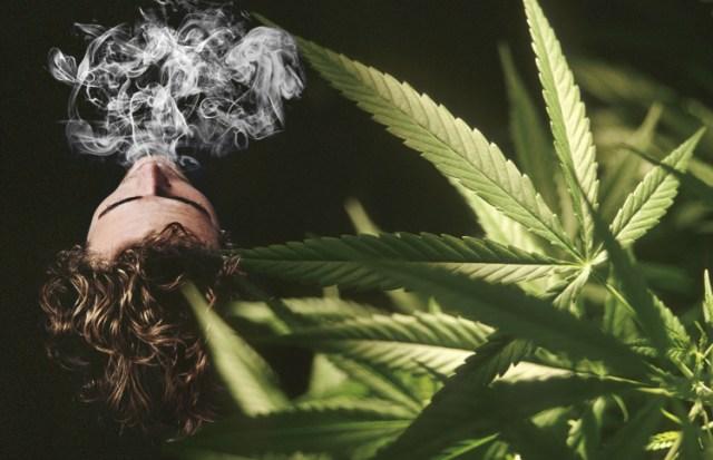 Cannabis Weed and Smoke
