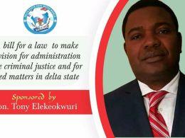 Honourable Anthony Elekeokwuri
