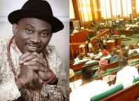 Ndudi Elumelu and House of Representatives