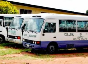 College Of Education Agbor