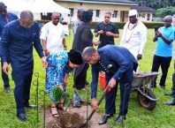 Planting of an Iroko Tree in Memory of Late, Senator David Dafinone