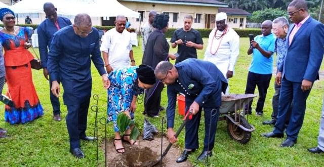Planting of an Iroko Tree in Memory of Late, Senator David Dafinone
