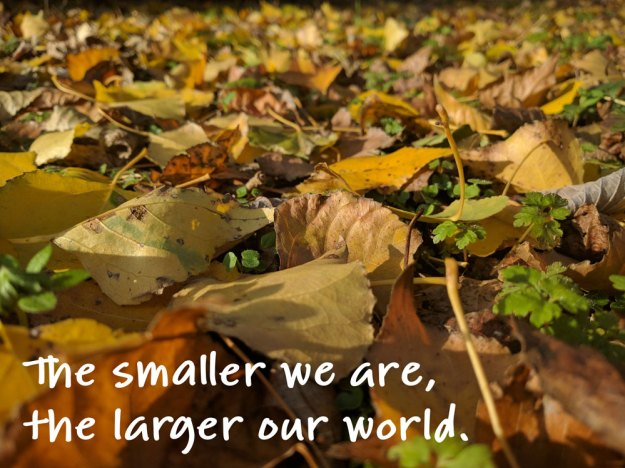 The smaller we are, the larger our world.