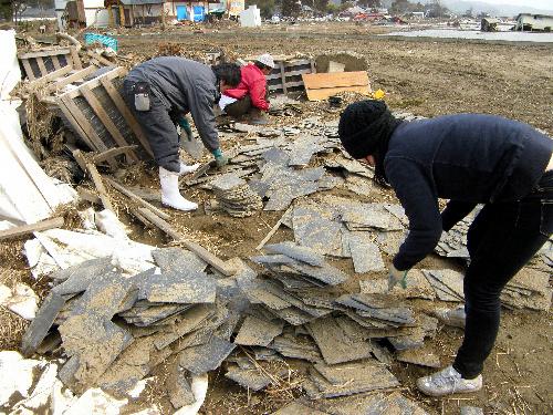 写真:津波で倉庫から流出したスレートを家族や従業員が拾い集めた=2日、宮城県石巻市北上町、熊谷産業提供