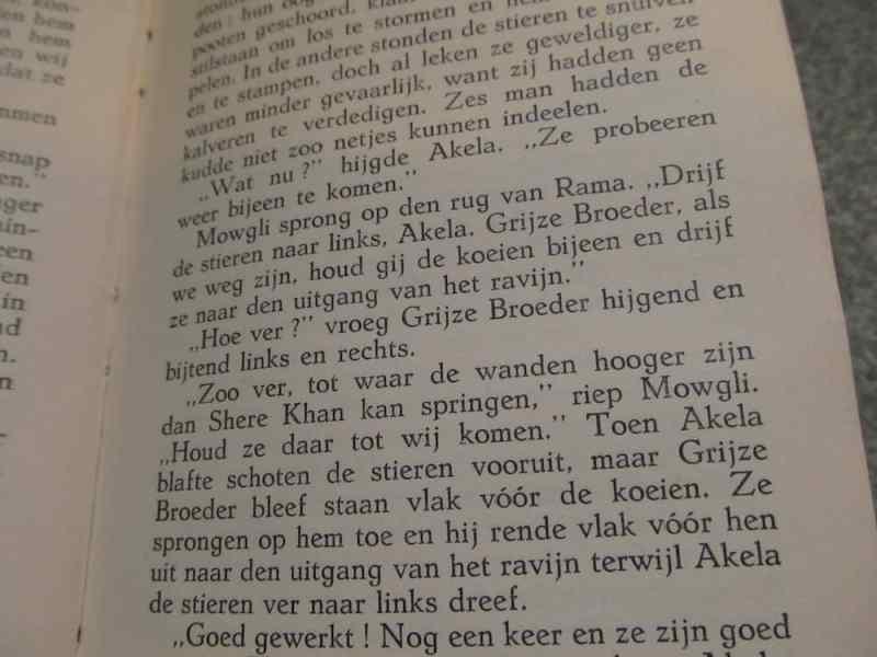 The Jungle Book in Dutch