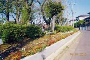 chiyogaoka1