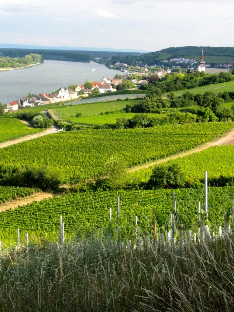 View of Nierstein am Rhein