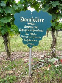 Dornfelder sign in Nierstein
