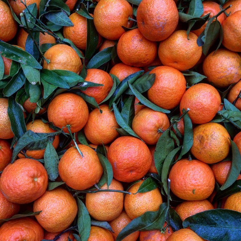 Lots of tangerines from above