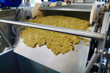 Waste pear pulp exiting a metal juicing machine