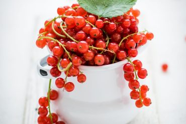 A white bowl full of redcurrants on their stems