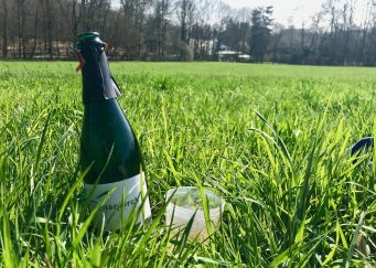 A bottle of Grauschiefer Riesling Sekt Brut and a reusable plastic glass in a field