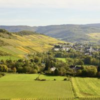 What to do in the Mosel: five gorgeous sights and culinary highlights