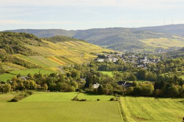 Vineyard views in the Mosel wine region