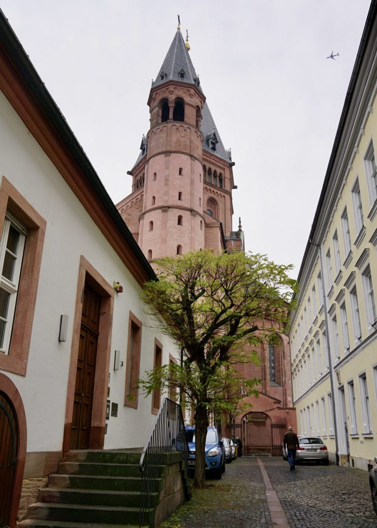 A narrow street with a green tree and Mainz Cathedral behind