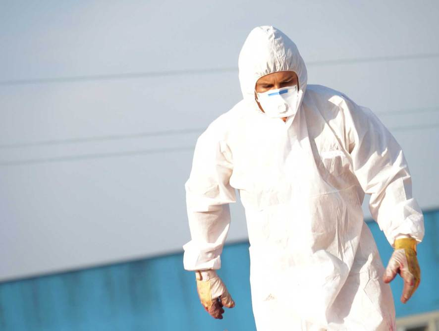 The Importance of Hiring a Licensed Asbestos Removal Company