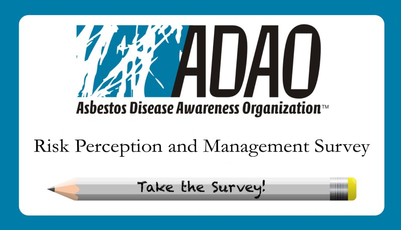 Adao Asbestos Risk Perception And Management Survey For Environment Health Safety Professionals