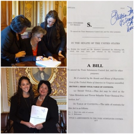 Boxer bill 2015