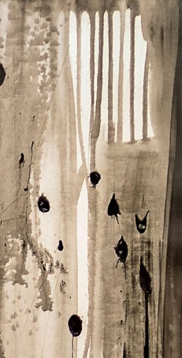 NON SENTO - Mix on canvas - Detail - (Ascanio Cuba)