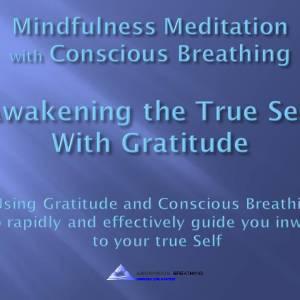 Mindfulness Meditation-Gratitude to Awaken the True Self@1016