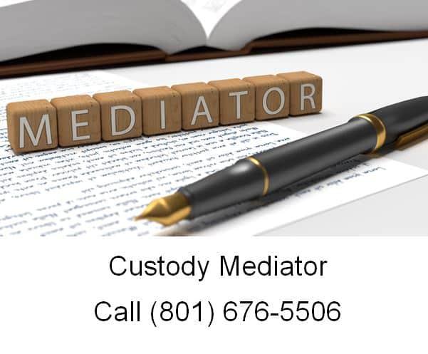Custody Mediator