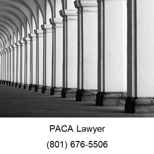 Enforcement of PACA Law