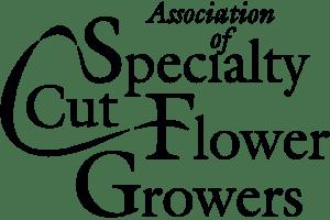ASCFG Script Logo - ASCFG Script Logo