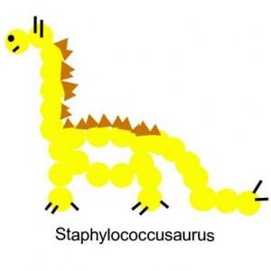 staphylococcusaurus