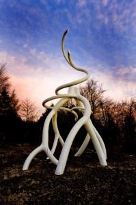Steel Roots