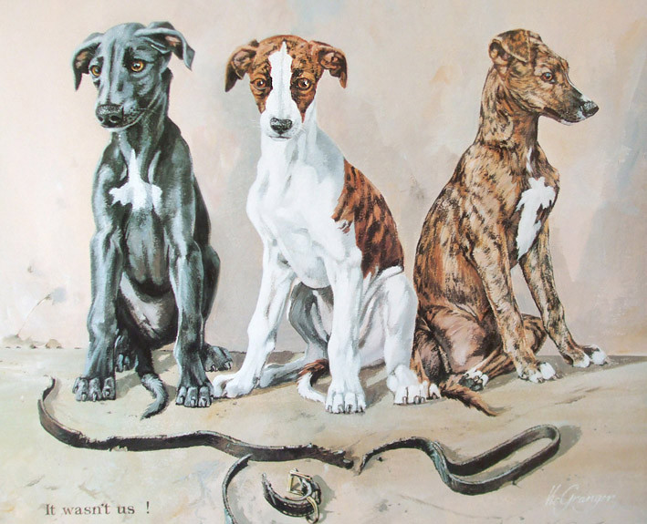 Greyhound Pups Limited Edition Print by Canine Artist Vic