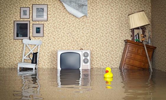 ¿Qué hacer si el seguro de mi casa o de mi comunidad no me cubre un siniestro?