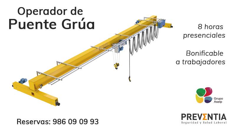 puente grúa