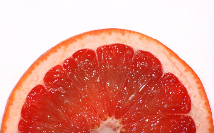 Half-of-grapefruit-slice1521