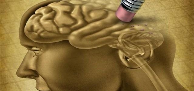 Como Nutrir el Cerebro