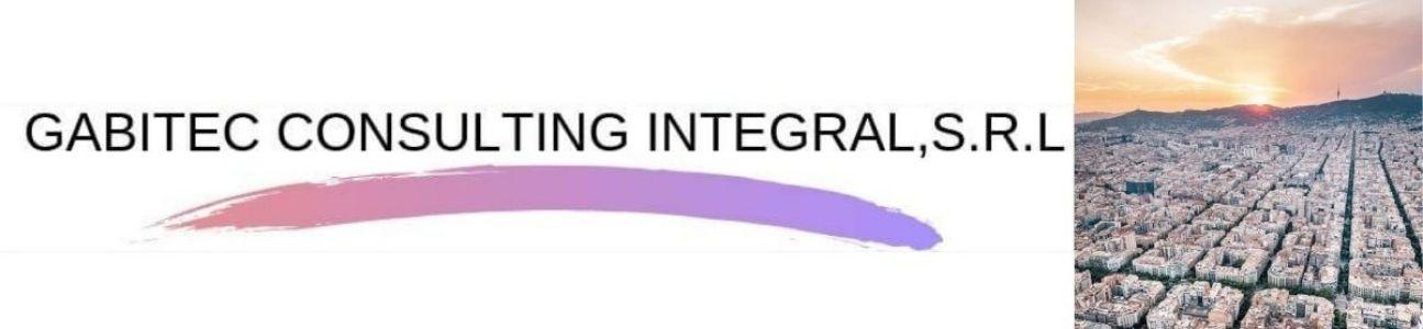 Gabitec consulting integral