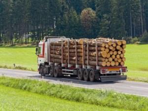 camion-maderas
