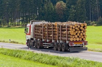 """Prácticas en empresas de curso """"conductor de vehículos pesados"""""""
