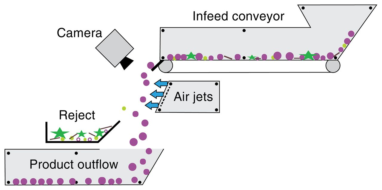 Review of the Impact of Mechanical Harvesting and Optical